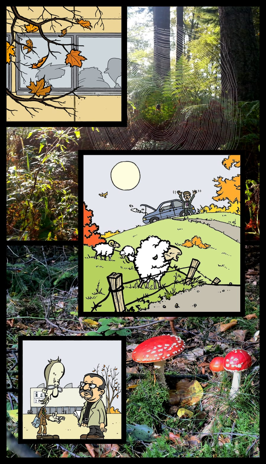Collage of autumnal panels from kopozky.net and photos